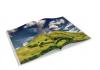 Boek, heuvel, landschap